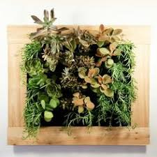 indoor living wall kit with rustic frame diy projects vertical