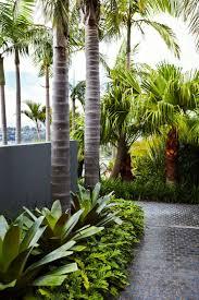 Garden Design Ideas Sydney Sydney Tropical Garden Design Outdoor Establishments Front