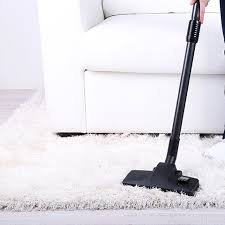 carpet and upholstery cleaning proactive cleaning services