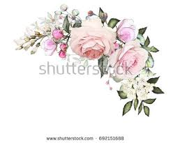 watercolor flowers arrangements floral illustration composition