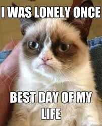 Lonely Meme - i was lonely once best cat meme cat planet cat planet