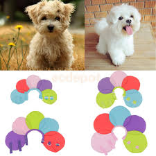 online get cheap cones for cats aliexpress com alibaba group