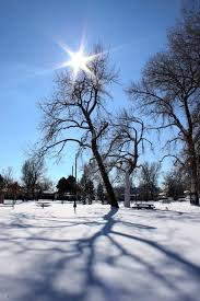 winter trees and shadows lessons tes teach
