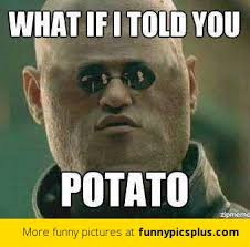 What If I Told You Meme - what if i told you potato funny pictures