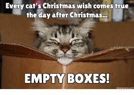 Christmas Cat Memes - 25 best memes about funny cat christmas funny cat christmas memes
