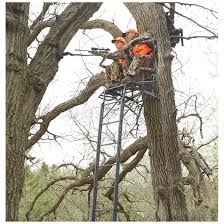 Stand Up Hunting Blinds Guide Gear 2 Person 20 U0027 Double Rail Ladder Tree Stand With Hunting