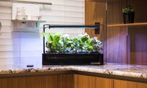 Kitchen Grow Lights Most Effective Ways To Overcome Kitchen Grow Lights S