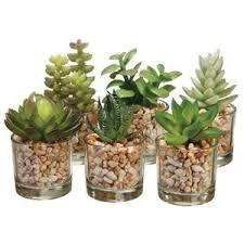 amazon succulents succulent wreath as candle holder love it etsy shopping