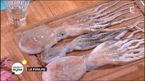 poulpe cuisine notre produit du jour le poulpe