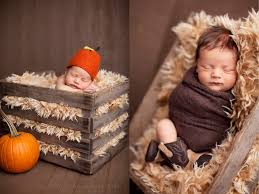 thanksgiving newborn photography turkey knoxville