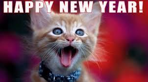 Happy New Year Cat Meme - cat happy new year happy new year cats 1 happy new year 2018 info