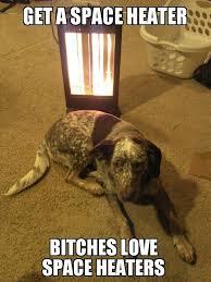 Bitches Love Meme - bitches love space heaters memes