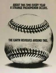Baseball Memes - baseball meme 39 sports fan dog collars