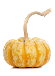 dan s fresh market ultimate fall pumpkin squash guide