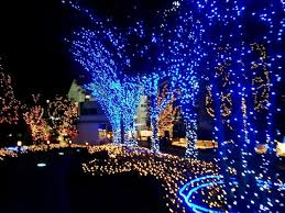 outdoor lighted decorations the floors snowy