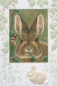 pumpernickel cards 8 best pumpernickel press my favorite christmas cards images on