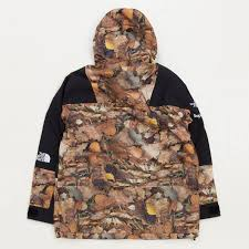 North Face Light Jacket Supreme X The North Face The North Face Mountain Light Jacket