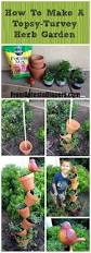 best 25 patio herb gardens ideas only on pinterest gardening