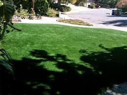 artificial turf carrollwood florida landscape ideas landscaping