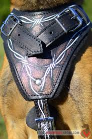 belgian malinois vest belgian malinois harness with barbed wire design h1bw 1092
