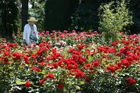 Niagara Botanical Garden Botanical Gardens Niagara Niagara Falls Attractions