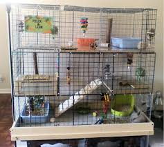 How To Build A Rabbit Hutch And Run How To Build A Rabbit Cage Using Cubes Advice For Indoor Rabbits