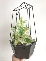 trellis with planter geometric metal planter with trellis u2013 noordinarymorning com