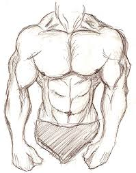 muscular body sketch by sixarmedwerewolf on deviantart