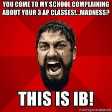 International Memes - 20 best crazy ib images on pinterest international baccalaureate