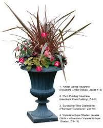 Plants For Patios In The Shade Four Container Planting Ideas For Autumn Fine Gardening