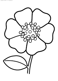 dibujos flores colorear imprimir
