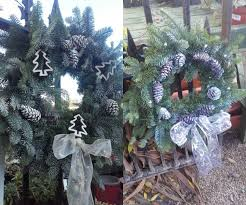 christmas trees for sale in festina lente from 25th november 2017