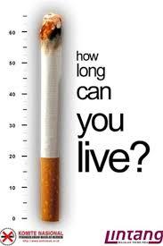 Anti Smoking Meme - creative anti tobacco ads 43 pics