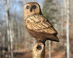 owl on tree branch etsy