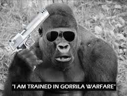 Gorilla Warfare Meme - l dub hd s fresh maymays