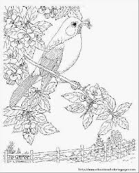 happy nature coloring pages coloring books 1816 unknown