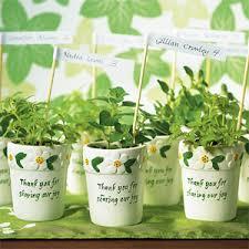 Flower Pot Wedding Favors - mini flower pots 6 pcs eco friendly wedding favors wedding