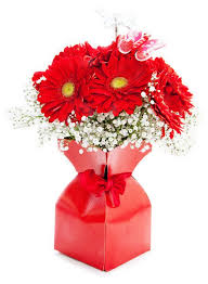Red Flowers In A Vase Best 25 Traditional Vases Ideas On Pinterest Metal Vase Garden