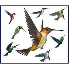 best hummingbird clipart 11918 clipartion com