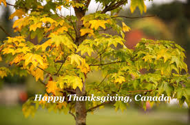 happy thanksgiving in tagalog wcd2015 twitter search