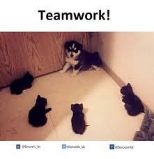 Teamwork Memes - teamwork if us us teamwork meme on me me