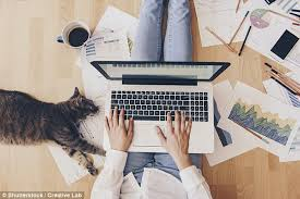 work from home help desk people who work from home are more productive daily mail online