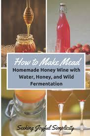 Seeking Honey In The Kitchen Fermentation