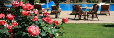 boutique hotel sicily beach perfect for your honeymoon