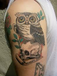 owl skull color arm tattoo animal tattoos best tats
