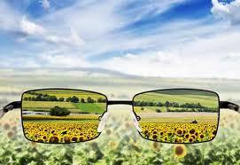 Blind Rehabilitation Visual Impairment Services Outpatient Rehabilitation Clinic