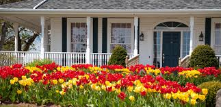 Landscaping For Curb Appeal - 7 ways to add curb appeal to your home homeadvisor