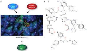 virtual screening of transmembrane serine protease inhibitors u2014bio