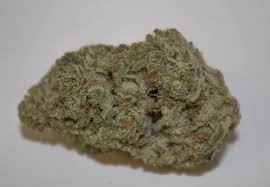wedding cake kush real review of lifted s wedding cake strain sticky and delicious