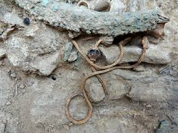 here u0027s what archaeologists found in a warrior u0027s grave that u0027s been